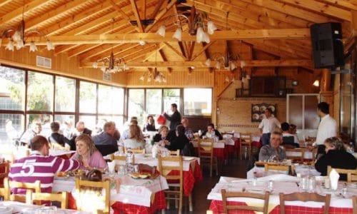 taverna-elaiwnas-paiania-aithousa-kyria-3
